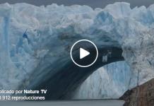Impactante vídeo de la caída de estos glaciares