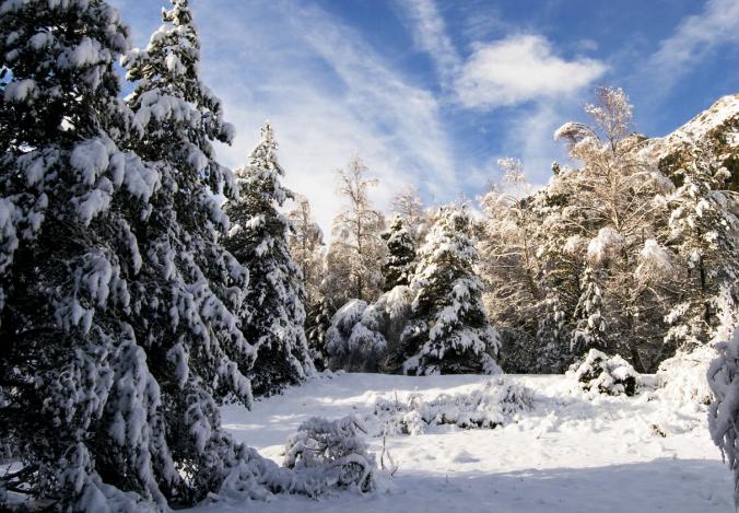 Los itinerarios fuera pistas del centro invernal promete grandes dosis de adrenalina a los incondicionales de la nieve virgen