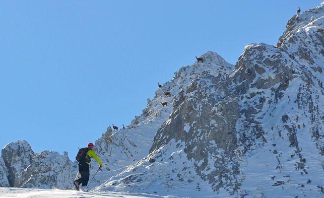 El esquí de montaña es uno de los clásicos del invierno