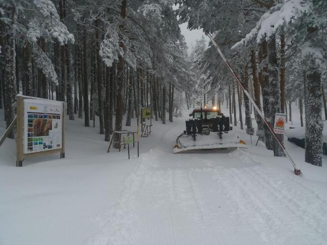 Buen pellizco de nieve en Navafría