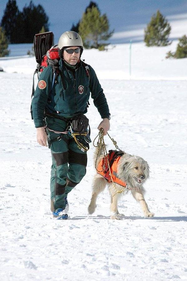 Los grupos de rescate de la Guardia Civil muchas veces arriesgan su vida para salvar a quienes han actuado irresponsablemente FOTO: Twitter Guardia Civil