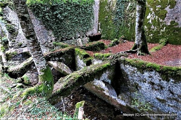 FOTO: Mayayo/Carrerasdemontaña.com