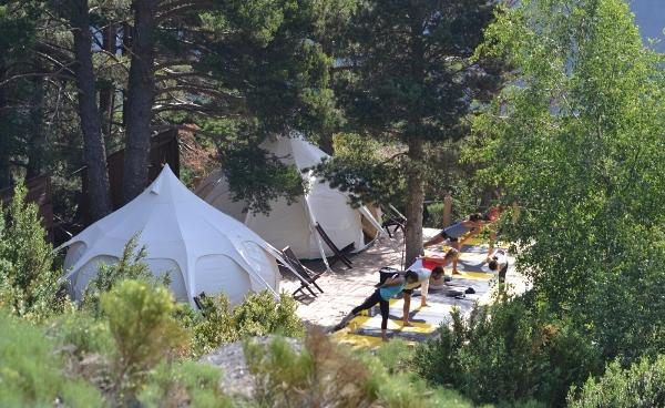 Sesión de yoga en el entorno de Sedornet
